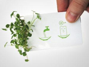 creative-business-salad